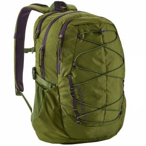 Plecak Patagonia - Chacabuco Pack Sprouted Green 30L